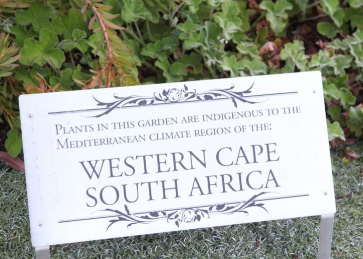 South Africa Native Garden