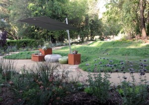 The IdealMow lawn alternative covered mounds of the outdoor amphitheater serve as picnic space, theater seating, all while directing rainwater to the bioswale.