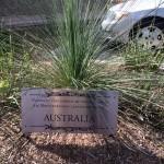 FormLA2015_LCVB_Australiafall