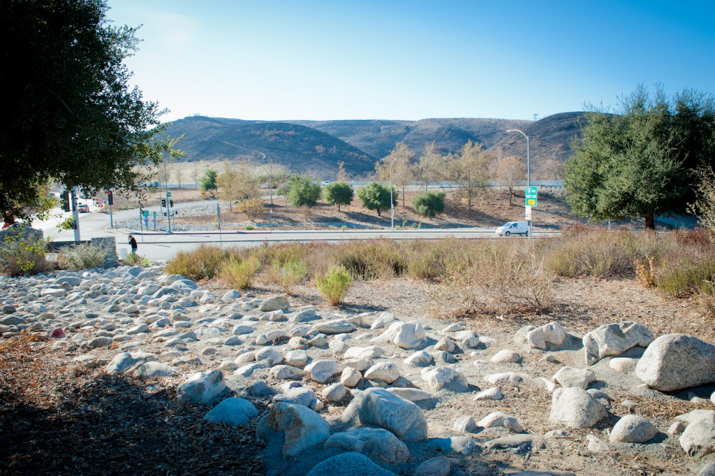 The Sunland Welcome Nature Garden boasts a view of hillsides charred by 2017's La Tuna Fire.